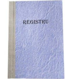 Registru A4 100 file, economic, matematica