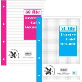 Rezerva caiet mecanic A5 50 file PIGNA, dictando