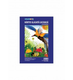Hartie glasata 238x338 lucioasa COLORARTE 10 coli/set