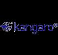 Capsator si capse, perforator marca KANGARO